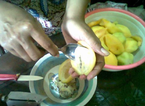 Bagian isi buah yang berbiji dipisahkan.
