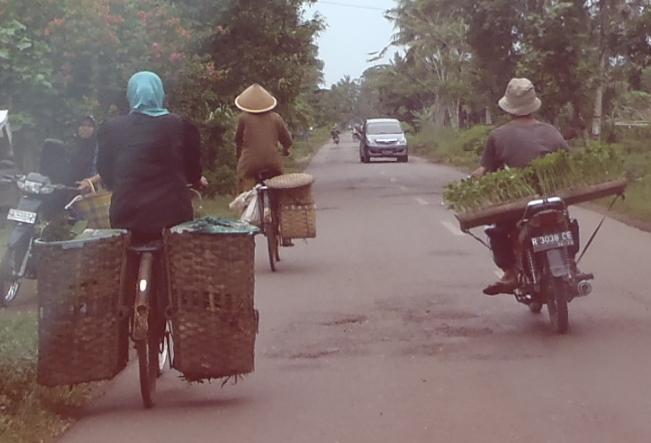 Rombong motor lawan rombong sepeda.